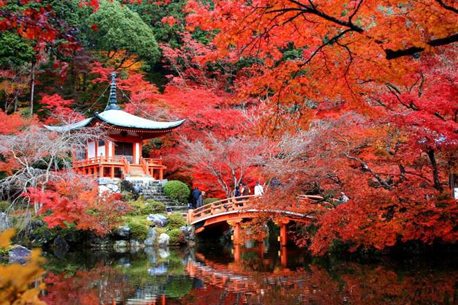 Những xu hướng du lịch thịnh hành mùa thu năm nay