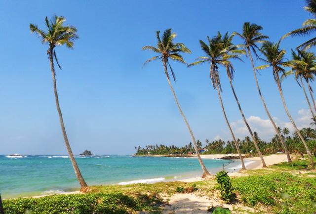 Bãi biển hoang sơ trên đảo quốc Sri Lanka