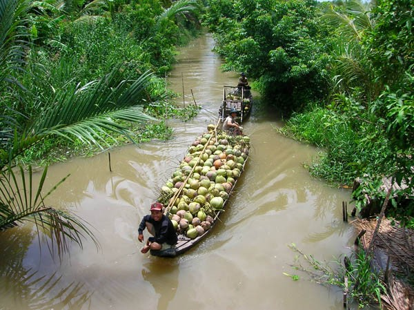 Phát triển du lịch vùng đồng bằng sông Cửu Long