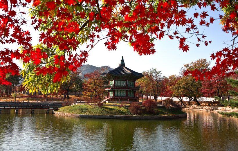 Cẩm nang du lịch Hàn Quốc từ A đến Z