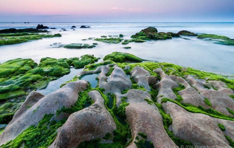 Khám phá biển Cổ Thạch đẹp như tranh vẽ