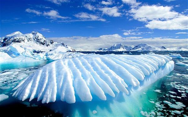 Vẻ Đẹp nam Cực Băng Giá