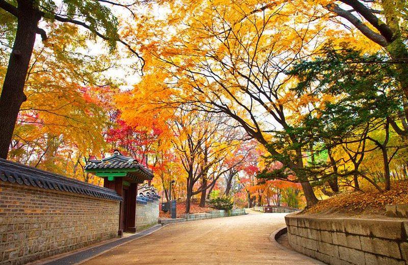 Lễ hội mùa hè hấp dẫn tại Hàn Quốc