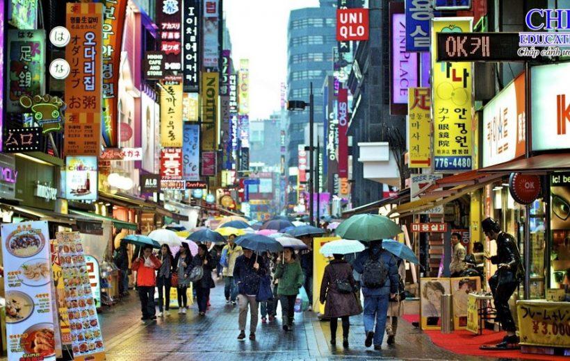 Bản đồ ẩm thực các món ngon trải dọc Hàn Quốc