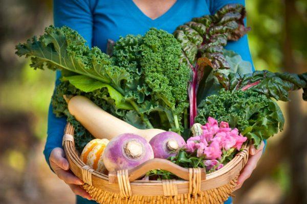 fall-harvest-basket