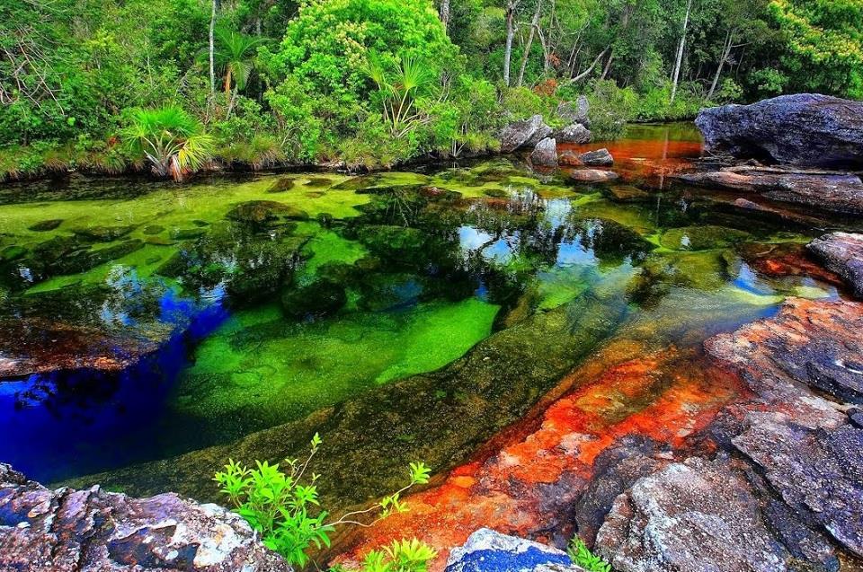 Con sông nhiều màu sắc